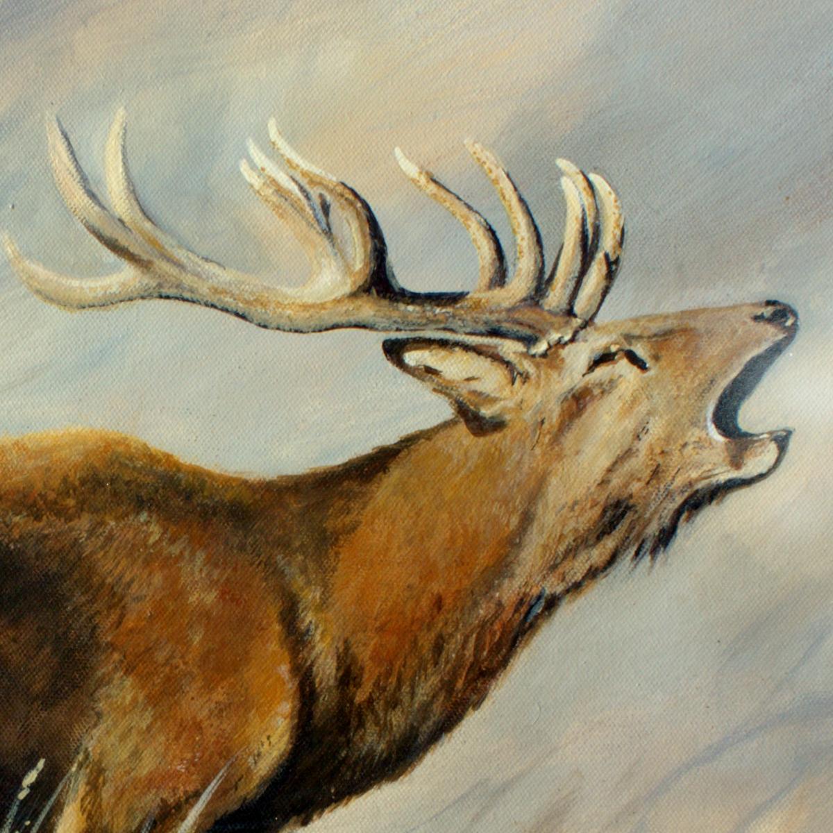 Roaring Red Stag - NZ Artist Tania Jack